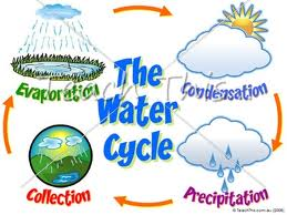 MSTTPA Go! TECH [licensed for non-commercial use only] / Water Cycle